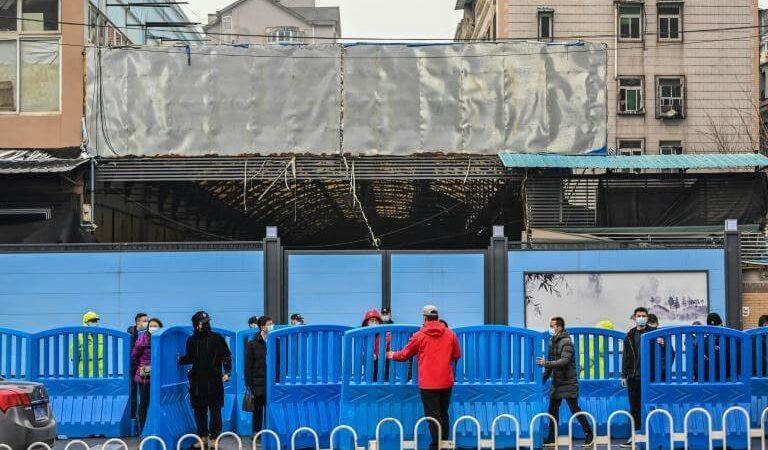 Chine : le marché Huanan, premier foyer de l'épidémie visité par les experts de l'OMS