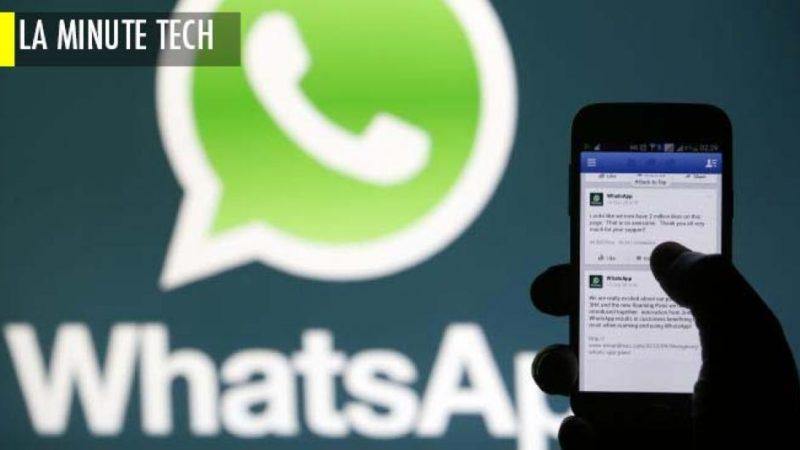 Migration de WhatsApp vers Signal et Telegram : Les causes du déferlement