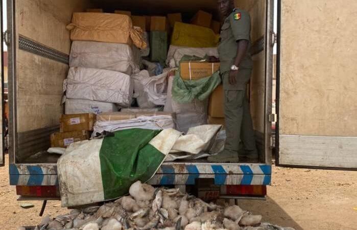 Keur-Ayip : des médicaments d'une valeur de 1,5 milliards FCFA saisis par la douane